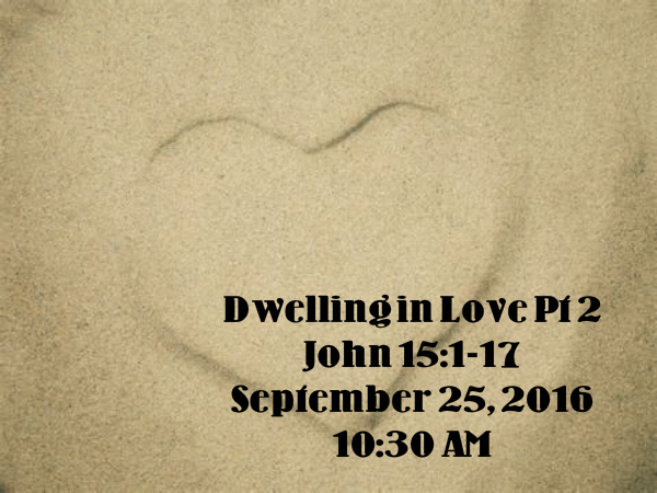 dwelling-in-love-pt-2