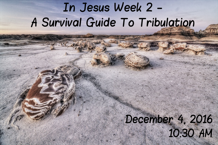 in-jesus-week-2